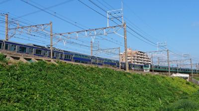 DSC_0812.JPG