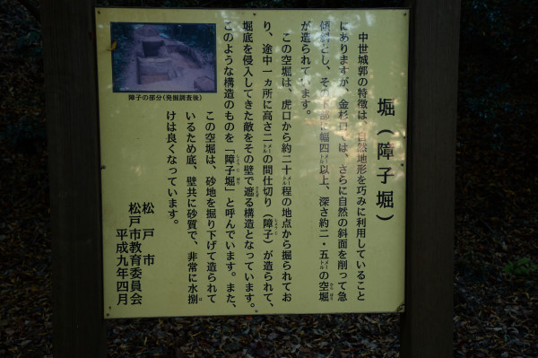 DSC_7682.JPG