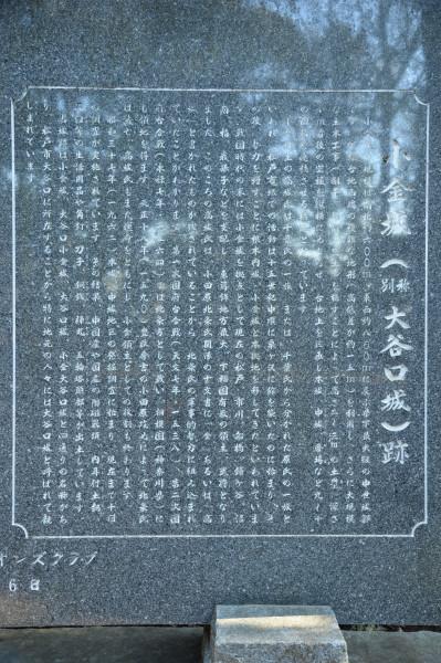 DSC_7685.JPG